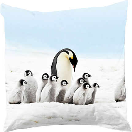Zoom: Good Morning Renforcé Kissenbezug Pinguins