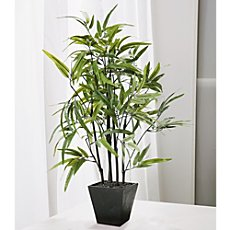 Artifical bamboo plant