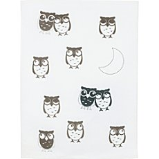 Pack of 2 terry dish towels