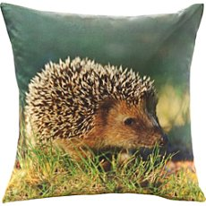 Erwin Müller cushion cover, hedgehog