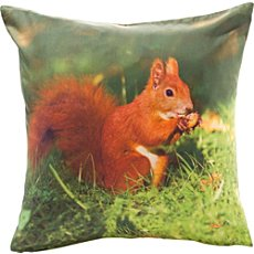 Erwin Müller cushion cover, squirrel