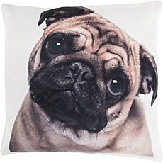 Erwin Müller cushion cover, pug dog