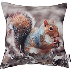 Tom Tailor Kissenhülle T-PRINTED SQUIRREL
