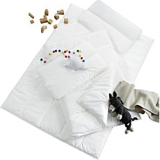 Centa-Star Bett-Set AllergoProtect 2-teilig
