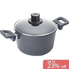 Woll  induction pot with glass lid