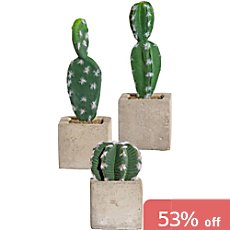 3-pack artificial cactus