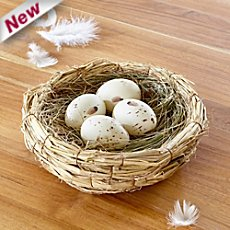 decoration nest