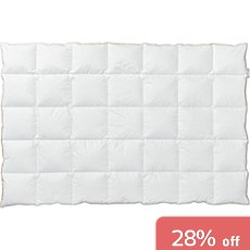 Centa-star limited  duvet