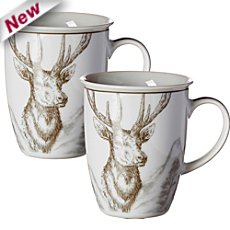 2-pack coffee mugs