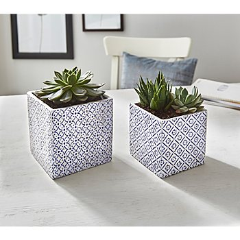 2-pack planters
