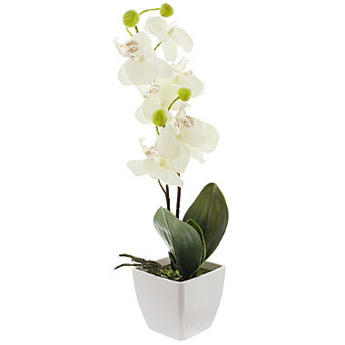 artificial plant orchid