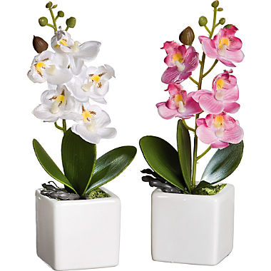 artificial plant orchid set of 2