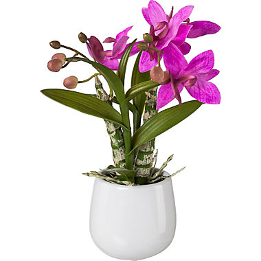 artificial plant Japanese orchid